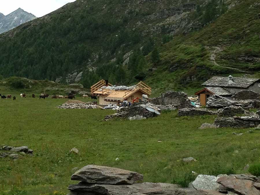 costruzione del tetto dello chalet in legno in Valle Spluga